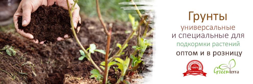 Питательные грунты для рассады – смесис повышенным содержанием питательных элементов.