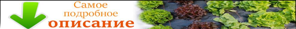 подробное описание агроткани
