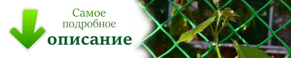 подробное описание сетки заборной пластиковой